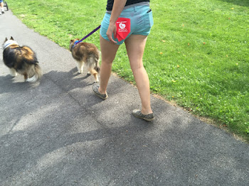 Local Canines Walk for Cancer Cure