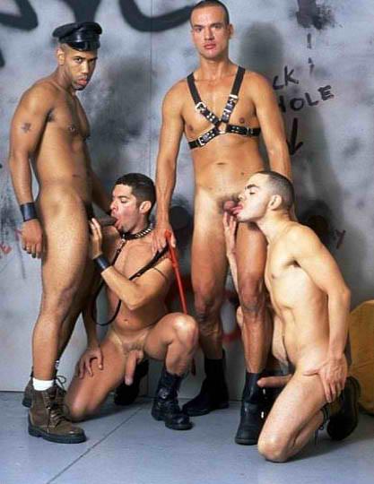 gay caucasians male