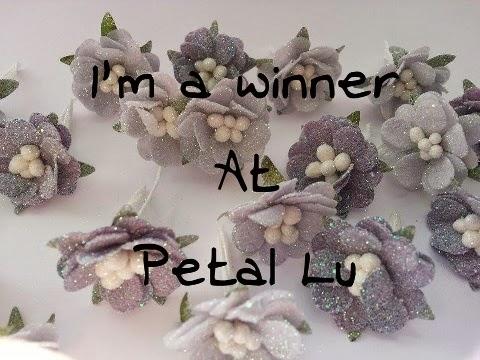 Winner at Petal Lu Challenge