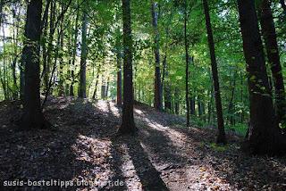 susis basteltipps mit stampin up: Licht im Laubwald