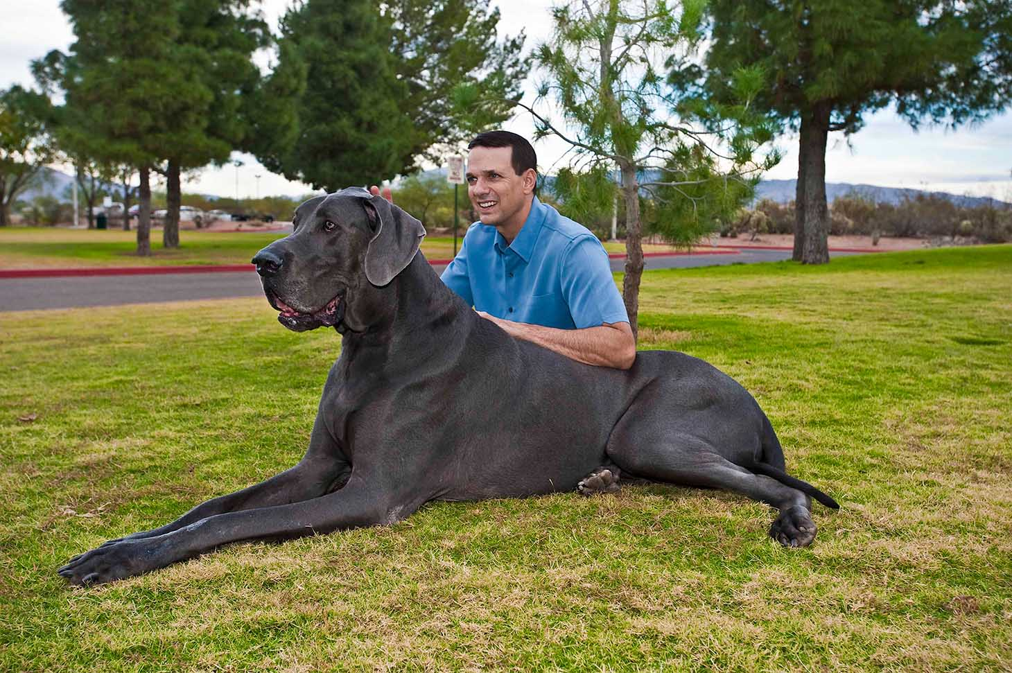 Amazing World: Giant George - The Tallest & The Largest in