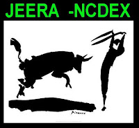 NCDEX Jeera Tips