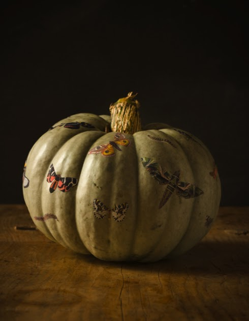 has made these great pumpkin centerpieces that have decoupaged butterflies