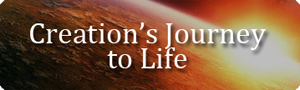 Creation&#39;s Journey to Life