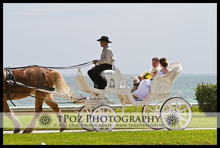 horse drawn carriage at Cancun Destination Wedding Moon Palace Resort Photos
