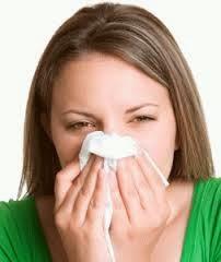 Pengobatan Herbal Penyakit Pilek Menahun