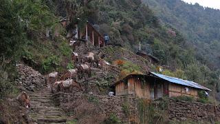 pueblo-nepal