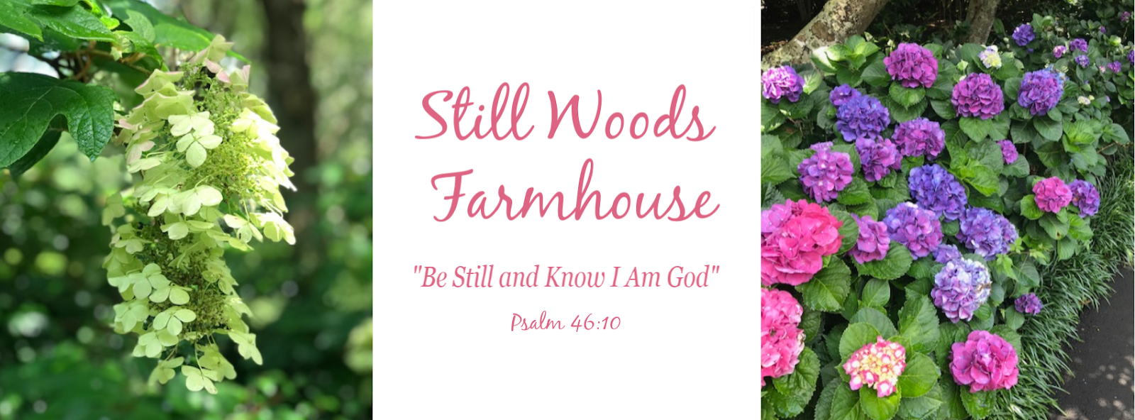 Still Woods Farmhouse