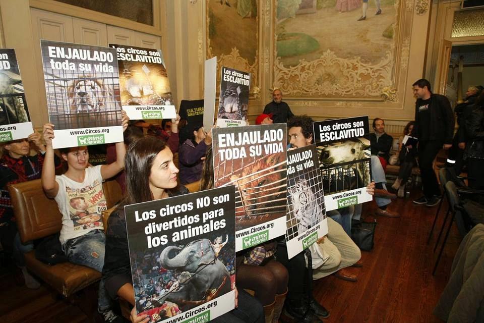 http://www.eldiariomontanes.es/torrelavega-besaya/201411/04/torrelavega-primer-municipio-cantabria-2014110