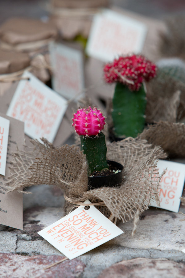 a lowcountry wedding blog featuring Charleston weddings, myrtle beach weddings, Hilton Head weddings, southern weddings, charleston wedding blogs, hilton head wedding blogs, myrtle beach wedding blogs, favors, cactus