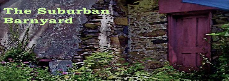 The Suburban Barnyard