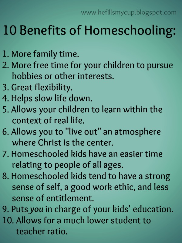 benefits of home schooling You asked for it, so here it is today i am happy kick off a new series on homeschooling with a guest post from milehimama (aka lisa) i'm a first gen homeschooling mom with zero experience, which is, um, intimidating to say the least.