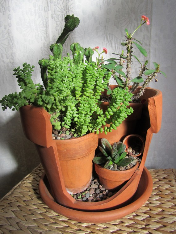 Broken Pot Planter