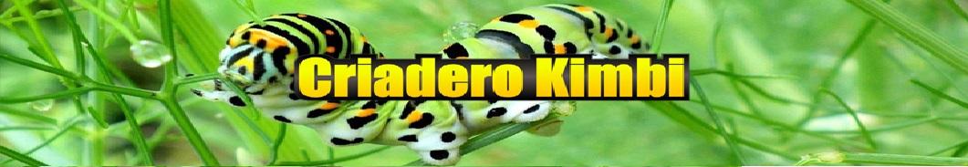 Criadero Kimbi