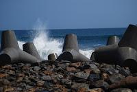 pemecah ombak pantai glagah