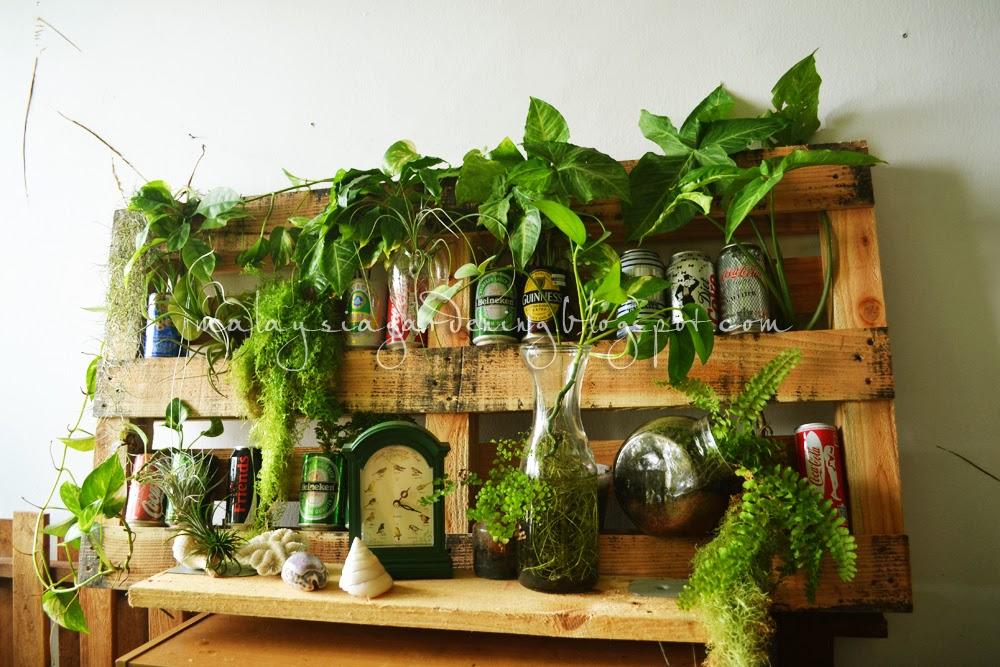Malaysia Gardening