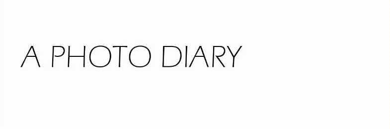 a photo diary