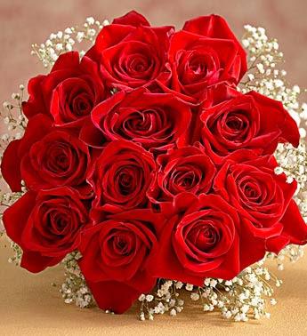 باقة لمن تهديها photos-mrkzy-roses-1