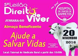 5º LEILÃO DIREITO DE VIVER - JUSSARA