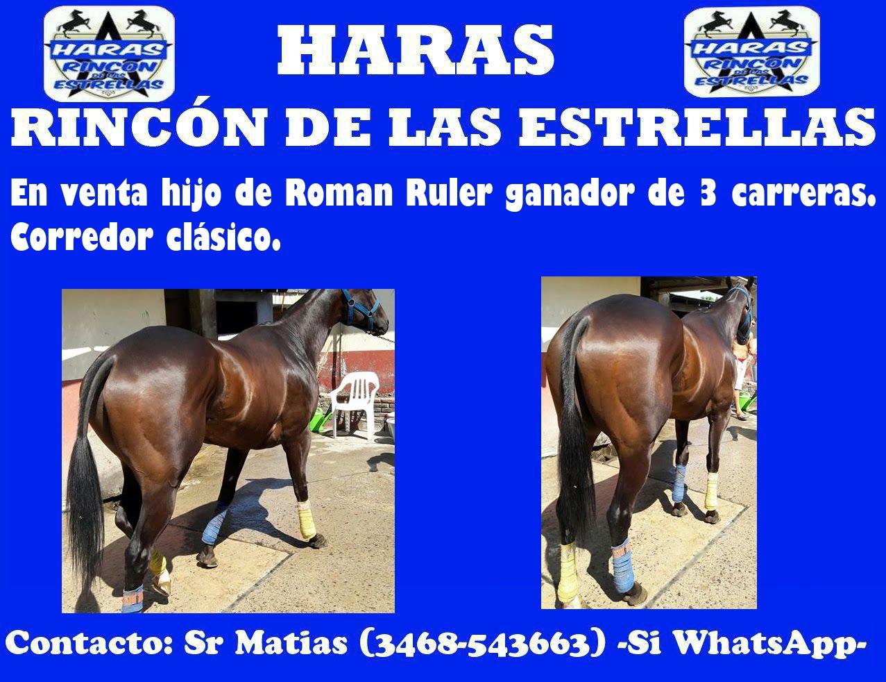 RINCON DE LAS ESTR. 1
