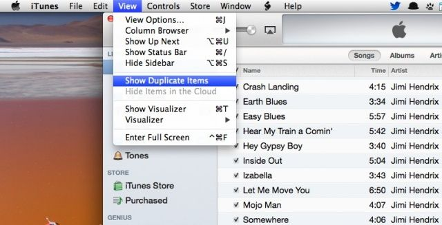 delete iTunes duplicate songs