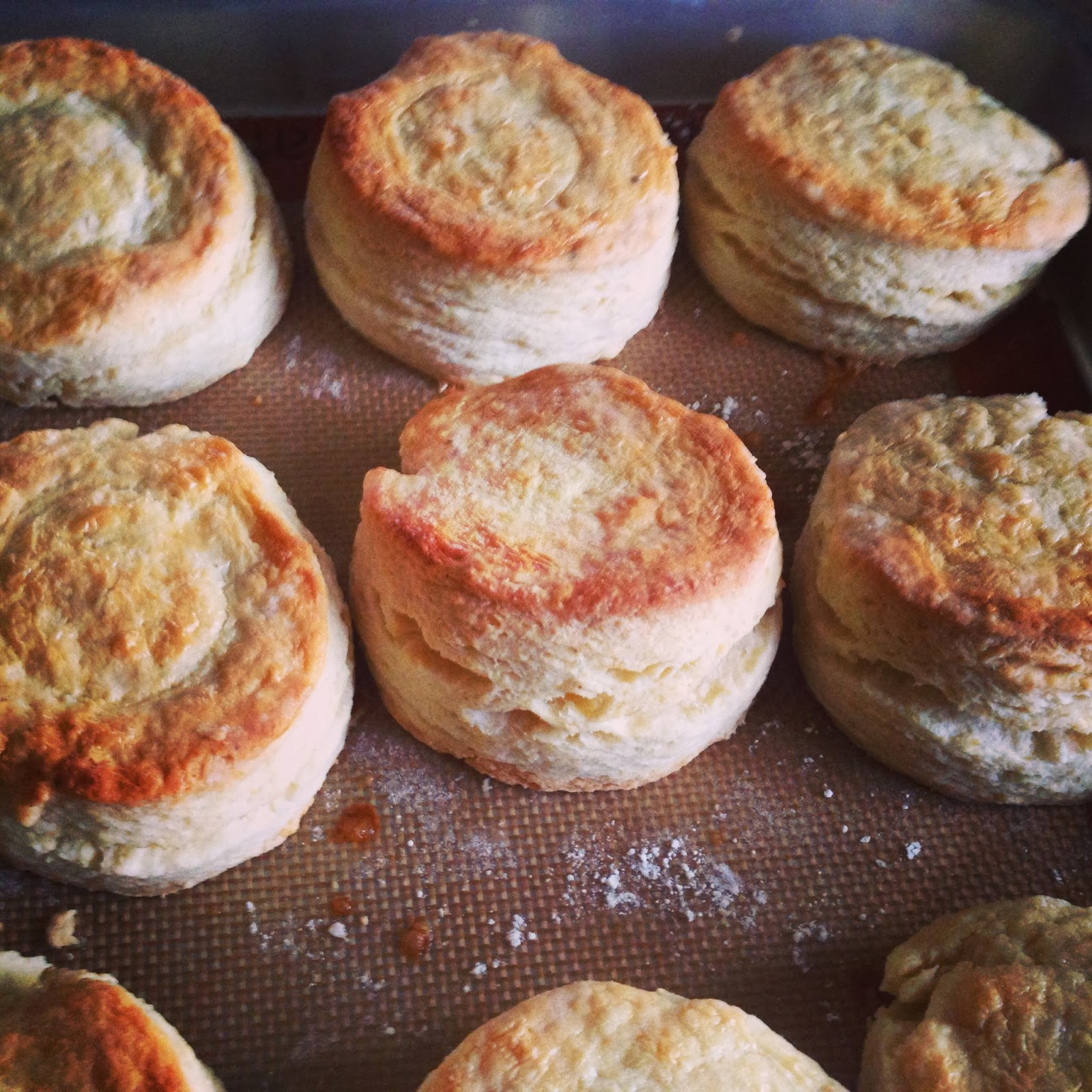 how to make normal biscuits