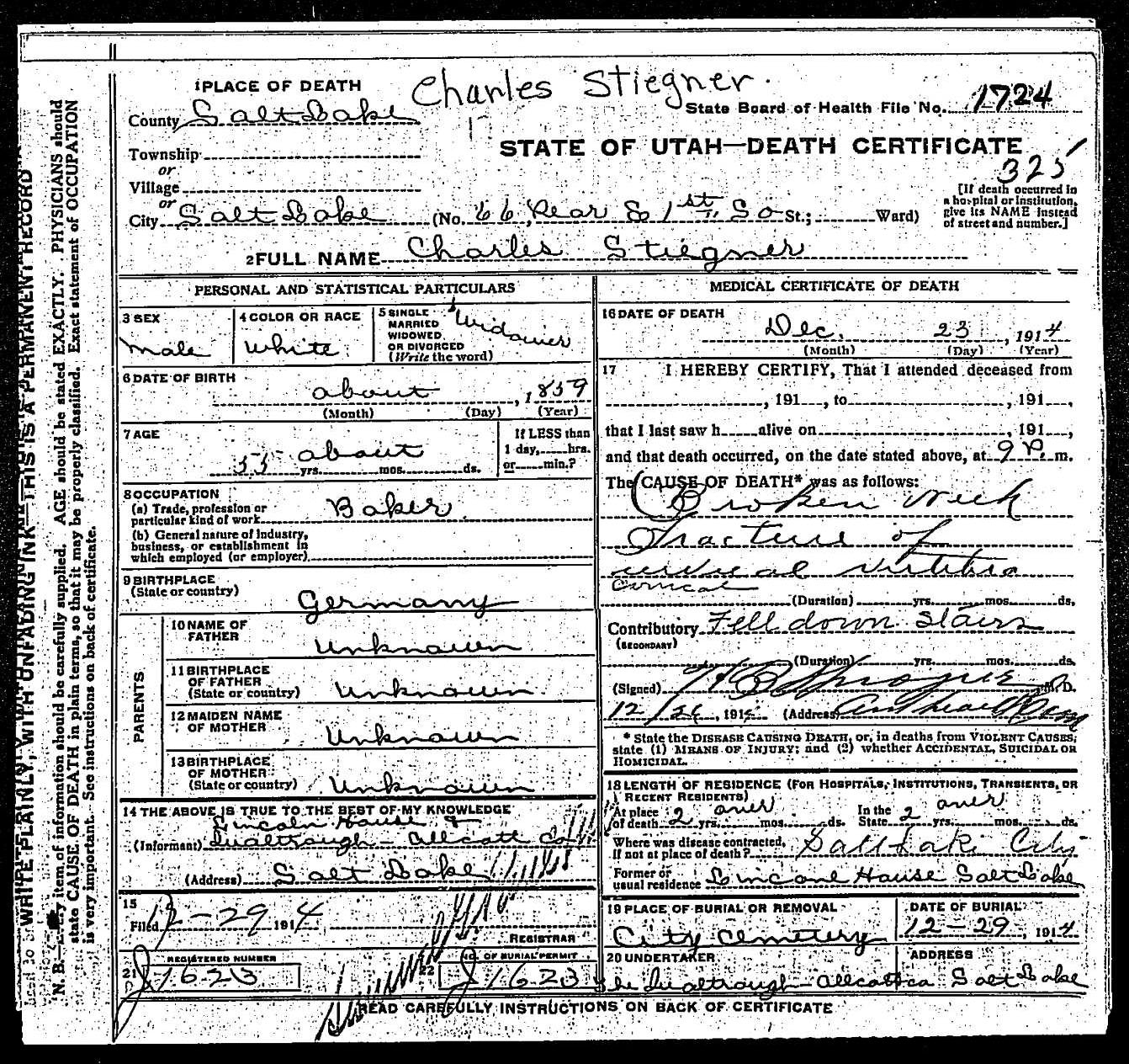 Newlun family july 2011 utah department of health office of vital records and statistics death certificates series 81448 entry 46636 stiegner 1betcityfo Choice Image