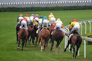 at yarışı safkanların yarış karakterlerinin önemi
