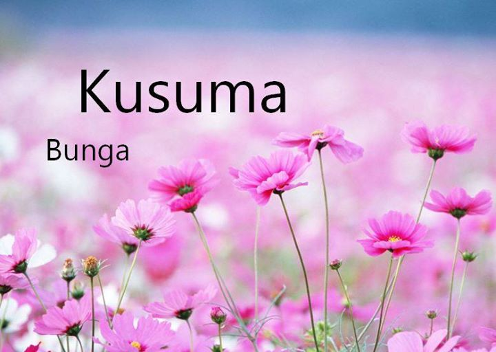 Kusuma yang berarti Bunga