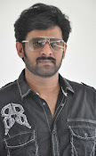 Rebel Star Prabhas latest photos-thumbnail-10