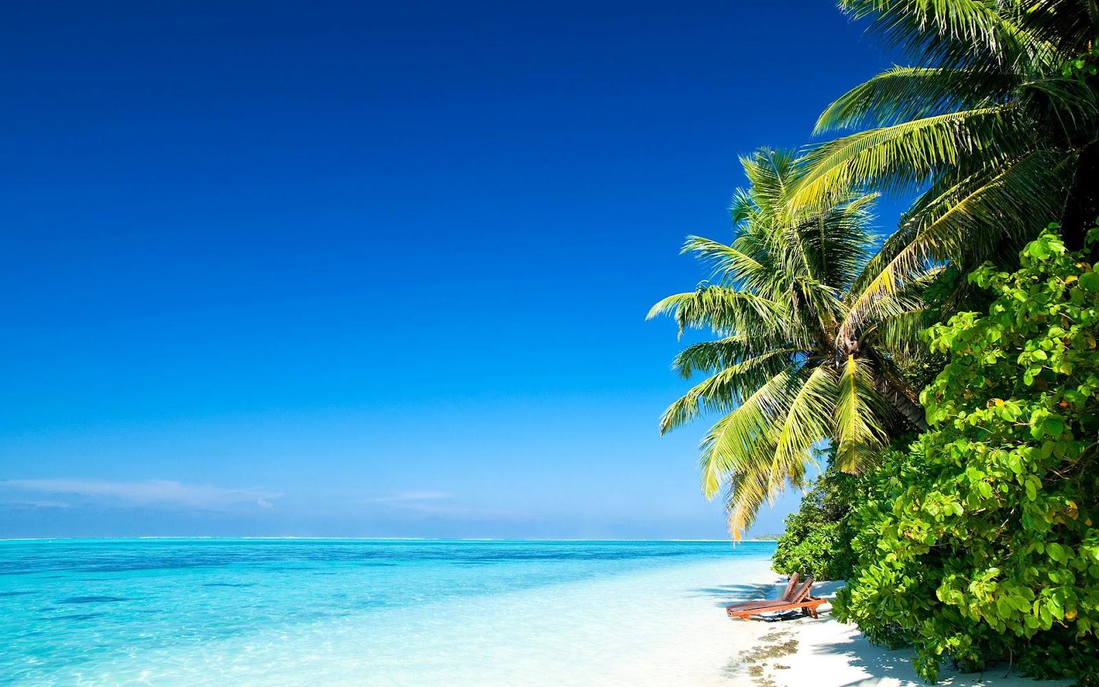 40 prachtige zomer achtergronden | Bureaublad Achtergronden