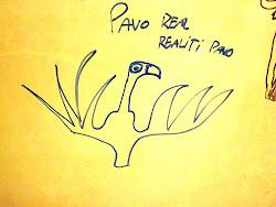 Pavo Real. Realiti Pavo