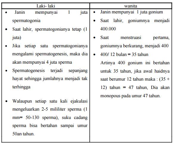 Sistem reproduksi perbedaan spermatogenesis dan oogenesis keterangan tabel nomor 4 ccuart Choice Image
