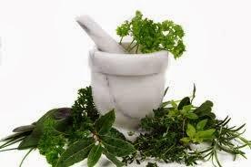 Informasi Obat Herbal Yang Ampuh dan Aman