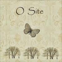 Visite o site