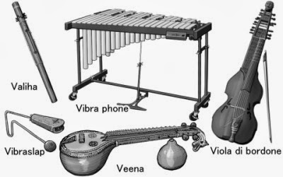 monochrome illustration : valiha - viola di bordone
