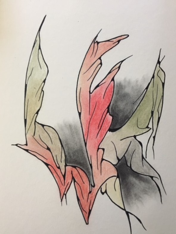 Alice MASSÉNAT, dessin, SOAPBOX N°111, Automne 2018