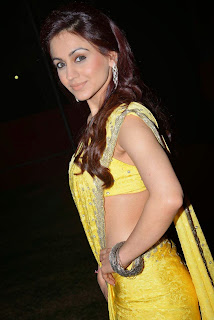 Actress Aksha Pardasany Latest Pictures in Yellow Saree at Dr Salim Audio Launch  13