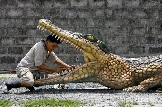 smešne slike: čovek čisti krokodilske zube