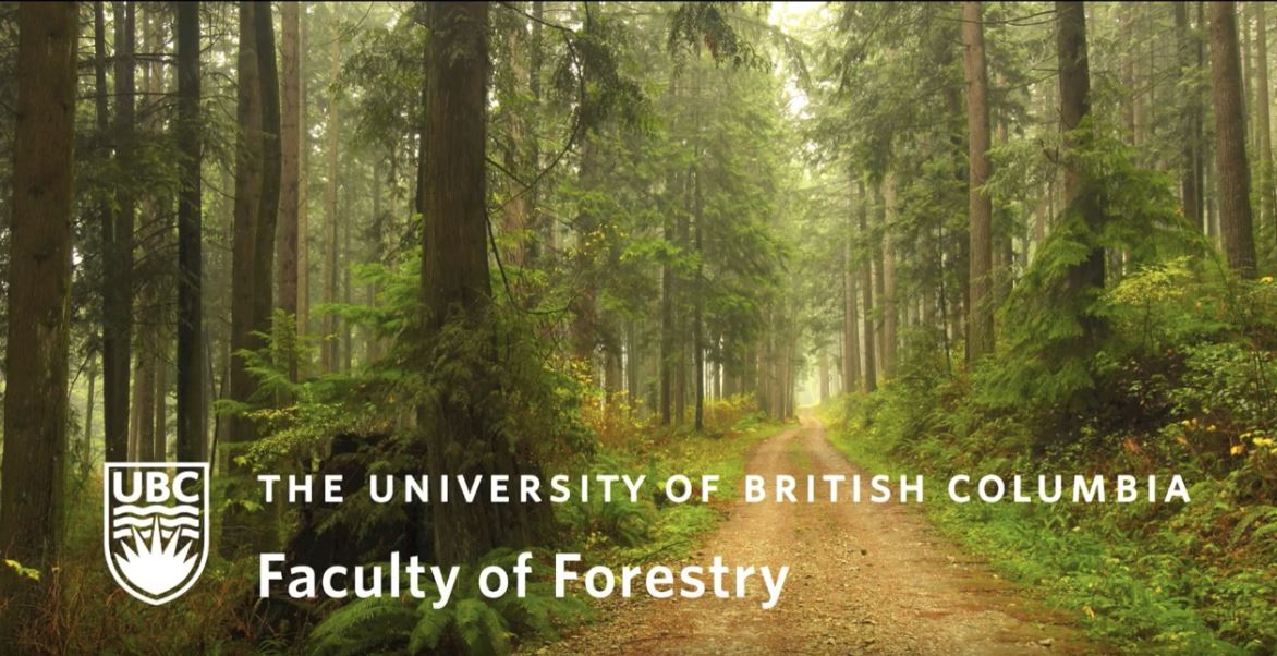 Most Recent Film: The Research Forest