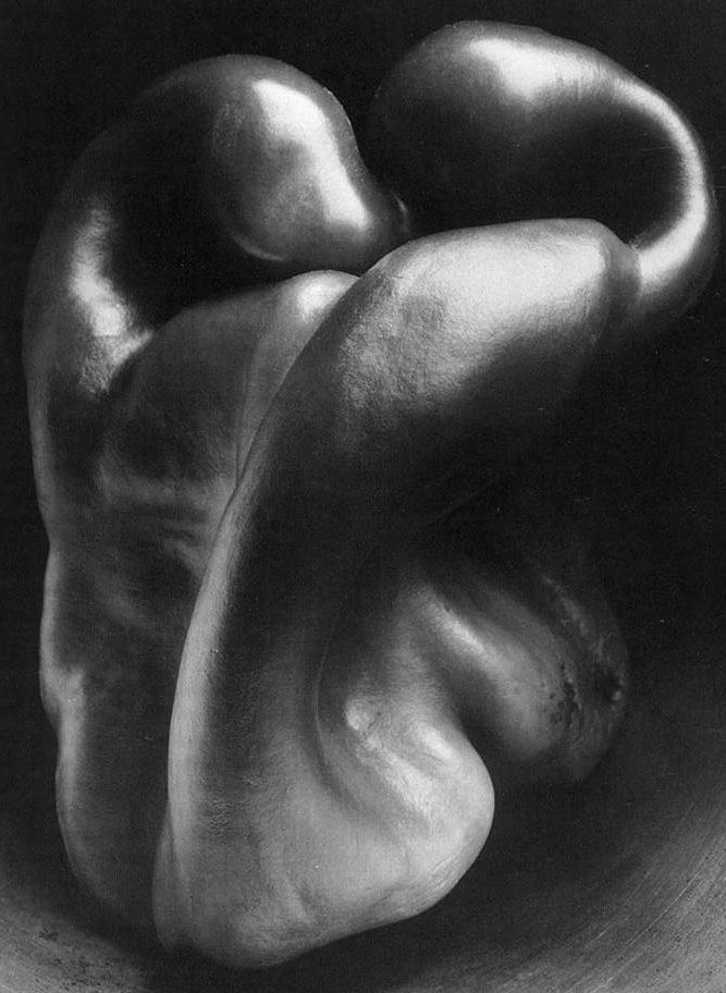 photography the life of edward weston essay Still life photography object photography creative photography food photography pattern photography contrast photography concept photography white photography edward weston forward when he came back he concentrated on nature studies until he died in edward weston is widely regarded as one of the foremost photographers in america.