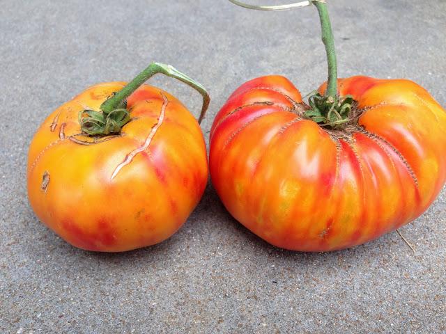 Sublime Kitchen: Fresh Pineapple Tomato and Corn Salsa