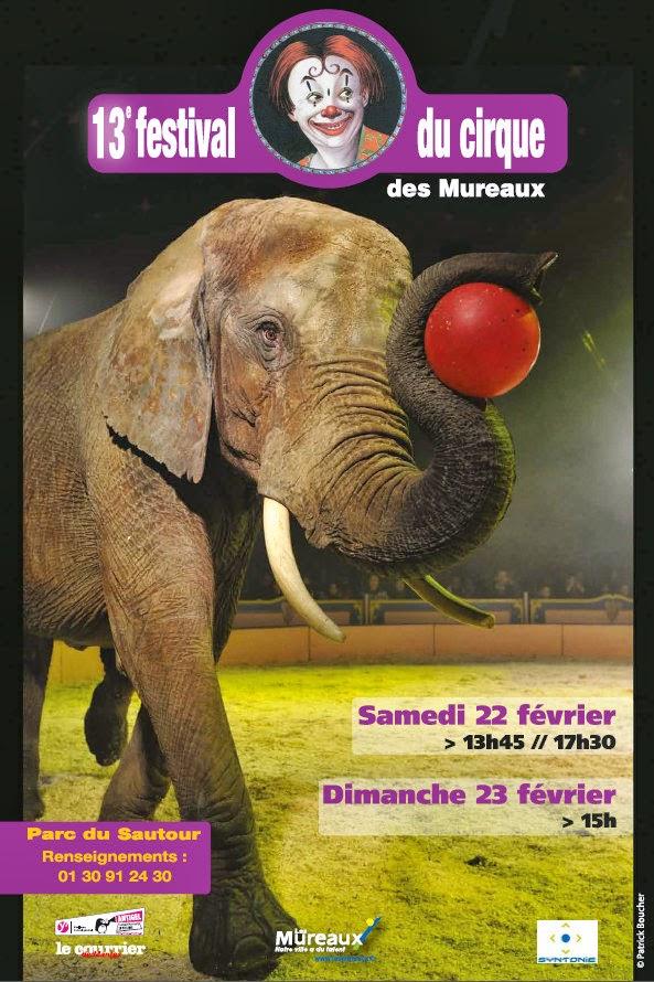Festival des Mureaux 2014