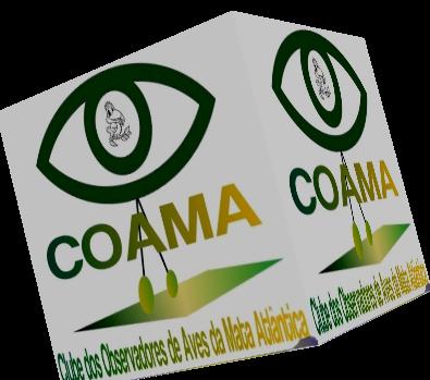 COAMA - Joinville - Observadores de Pássaros - Aves - Rain Forest - Birdwatching - Birding - Bird