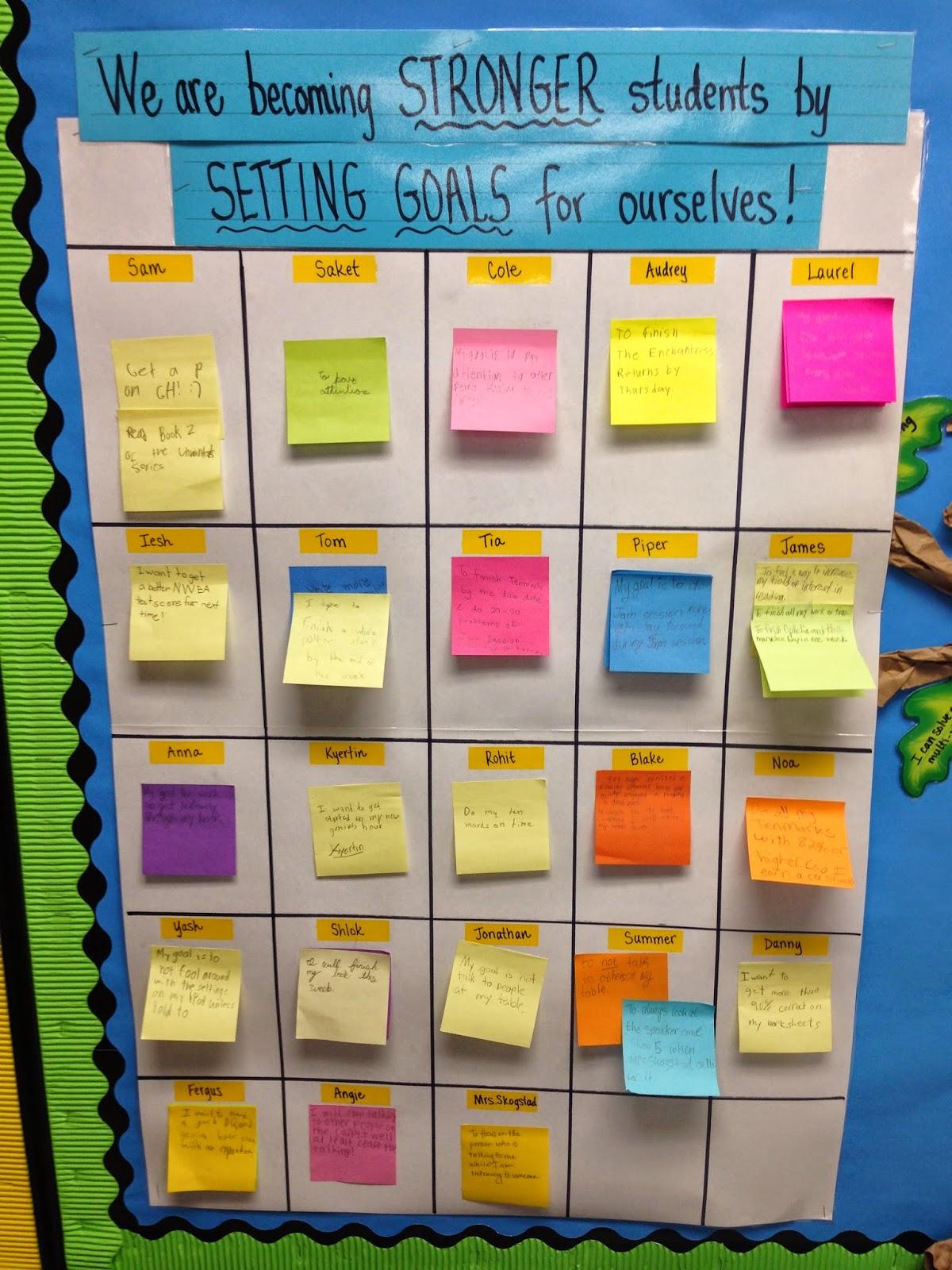 set on display essay