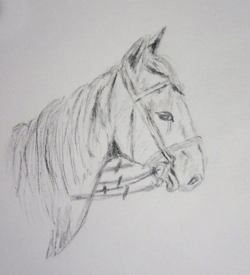 лошадь, нарисованная угольной таблеткой