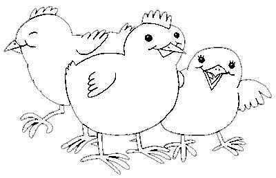 LAMINAS PARA COLOREAR  COLORING PAGES Animales para dibujar