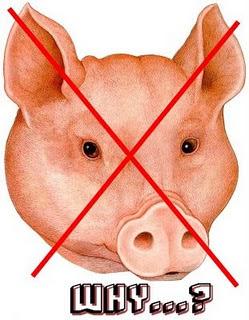 Babi Itu Kan Haram Untuk Semua Umat Islam Saja [ www.BlogApaAja.com ]