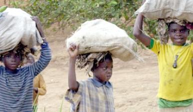 Angola: Famílias com baixos rendimentos usam filhos para a busca de receitas