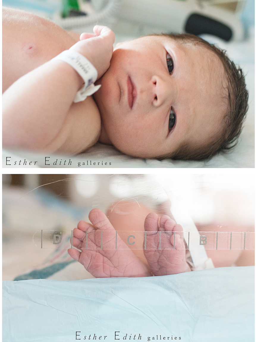 Massachusetts Birth Photography, North Shore MA Photographer